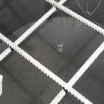 Medidor de umidade de carvão